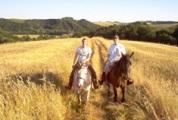 トスカーナを満喫するなら乗馬、レンタルサイクルを活用!