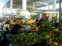 コース5  美食ローマの朝市場見学と穴場スポット!コース