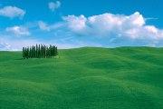 トスカーナらしい景色に逢いたいのならオルチャ谷へ!