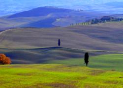 春のオルチャ谷をハイヤーでドライブ:リラックスした家族旅行